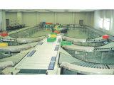 Logistics Multitrack Roller Prodution Line
