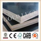 Qingdao Gold Luck Film Faced Sandwich Plywood Plate (QDGL150116)