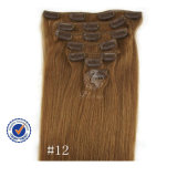 Top Quality Clip in Hair Extensions (C-54)