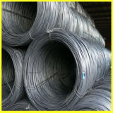 Dia 5.5mm Steel Wire Rod for Nail Making