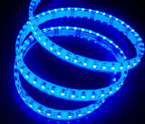 CE EMC LVD RoHS Two Years Warranty, Flexible SMD3528/5050 Blue Color LED Strip Light