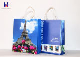 Lowest Price Non-Woven Handheld Shopping Bag