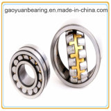 High Speed Double Row Spherical Plain Bearing (22207)
