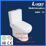 Sanitary Ware Two-Piece Ewc Washdown/Gravity Flushing for Promotion