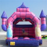 Inflatable Princess Jumping Castle (B1103)