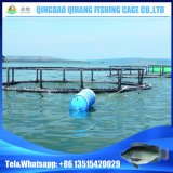 Aquaculture Floating Fish Farming Net Cage