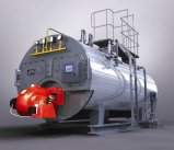 Wns Oil/Gas Fired Steam Boiler