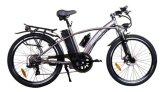 Vehicle 500W Electric Buggy Cycle, E-Bicycle (TDE02Z)