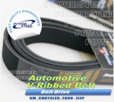 Timing Belt for American Car and Model