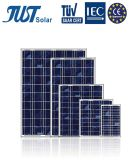 Chinese Product 60W Poly Solar Energy with Full Power