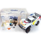 26CC New 1/5 Scale RC Car Buggy (RB260T)