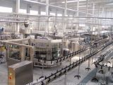 Uht Milk Processing Plant/Milk Machine/Filling Machine