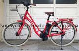 Electric Bike Brushless Mortor Lithium Battery /Adult City E Bike /Street E-Bike (SY-E2819)