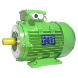 Y2 Series Standard Efficiency AC Three Phase Electrical Motor Industrial Engine