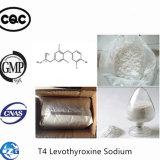 99% T4 Levothyroxine Sodium Fat Loss Powder Levothyroxine Sodium T4