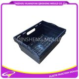 Plastic Injection The Leak Carrying Case Mould