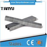 Stainless Steel 304/316 T50 Staples