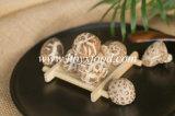 Mushrooms Vacuum Packed High Quality Dried Tea Flower Mushroom