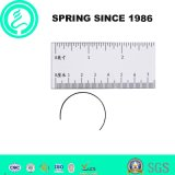 Custom Wire Spring DIN Standard Spring Wire