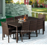 Glassic Design Wicker Rattan Outdoor Garden Furniture Chairs Dining Set by 8person (YT261)