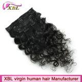 Clip in Hair Virgin Brazilian Human Hair Clip Hair Extension