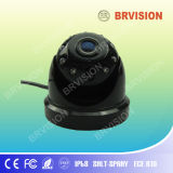 CCD Dome Camera with 180 Degree Angle