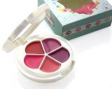 Various Colors Lip Gloss Box