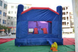 Small PVC Tarpaulin Inflatable Bouncer for Park Amusement
