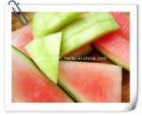 Factory Natural Watermeion Peel / Watermelon Rind 10: 1 Extract Powder