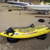 Factory Jet Power Surfing Plate with Ce Approved