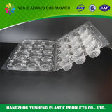 Leak Resistance Crystal Clear Food Packing Box