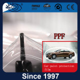 TPU Strentch Car Body Paint Protection Clear Transparent Ppf Film