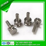 8mm OEM Customised Standard Stainless Steel Special Screw