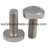 Stainless Steel T Head Bolts and Nuts