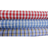 Cotton Yarn Dyed Check Fabric for Shirt (LZ5819)