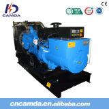 Diesel Power Generator with Cummins Engine
