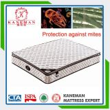 Healthy Pillow Top Pocket Spring Mattress for Home Furniture