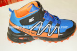 2014 Lasted Design Sport Shoes (TL01)