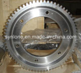 Famous Special Machining Gear Shaft Supplier