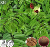 100% Natural Garden Burnet Root Extract Powder 10: 1