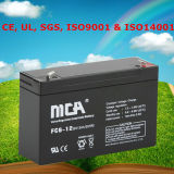 Us Battery 6 Volt Acid Battery Storage Battery Cell Storage