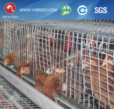 Poultry Farm Products