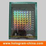 Custom 2D/3D Laser Security Holographic Master