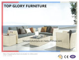 Sofa Set Rattan Furniture Outdoor Garden Sofa (TG-038)