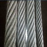 China Factory 1X7 Galvanized Steel Wire Rope/Steel Cable Rope (XM-020)