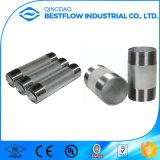 Galvanized Carbon Steel Male NPT Threaded Pipe Nipples