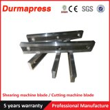 Cutter Blade for Steel Mill Shearing Machine
