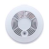 Sm-02-P1-Standalone Smoke Detector for Alarm System