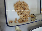 Mushroom Pns with High Quality, Nice Cut, Best Price (HACCP, ISO, BRC, FDA, HALAL, KOSHER)