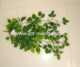 Artificial Rattan with White Flower Ornament (MW16027)